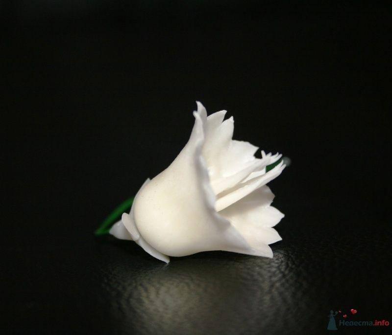 Фото 76318 в коллекции Фарфоровые цвяточки (handmade) - Вашкетова Юлия - организатор свадеб, флорист.