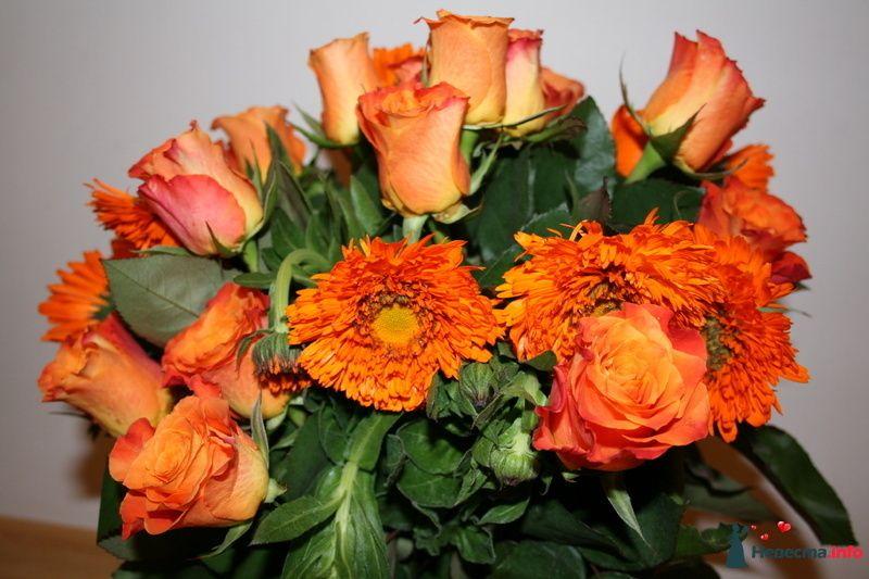 Фото 84151 в коллекции Своими руками - Вашкетова Юлия - организатор свадеб, флорист.