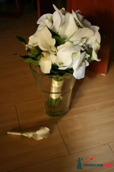Фото 126399 в коллекции Своими руками - Вашкетова Юлия - организатор свадеб, флорист.