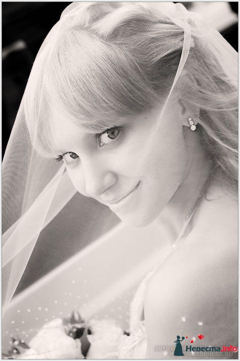Фото 129097 в коллекции Портфолио. Свадьба Варвара  и Владимир 12.06.2010 - Вашкетова Юлия - организатор свадеб, флорист.