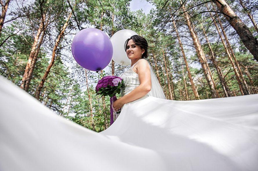 Фото 15228646 в коллекции Портфолио - Фотограф Сергеев Владимир