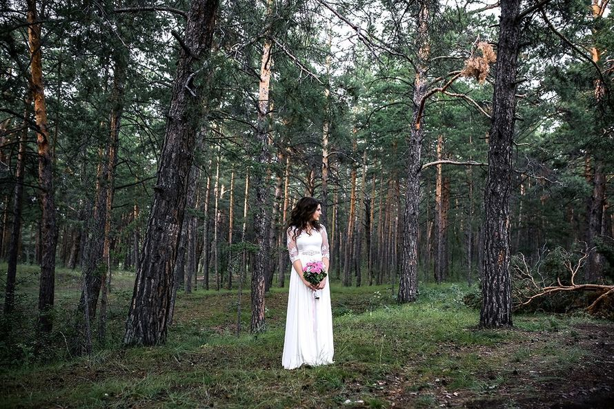 Фото 15338620 в коллекции Портфолио - Фотограф Сергеев Владимир