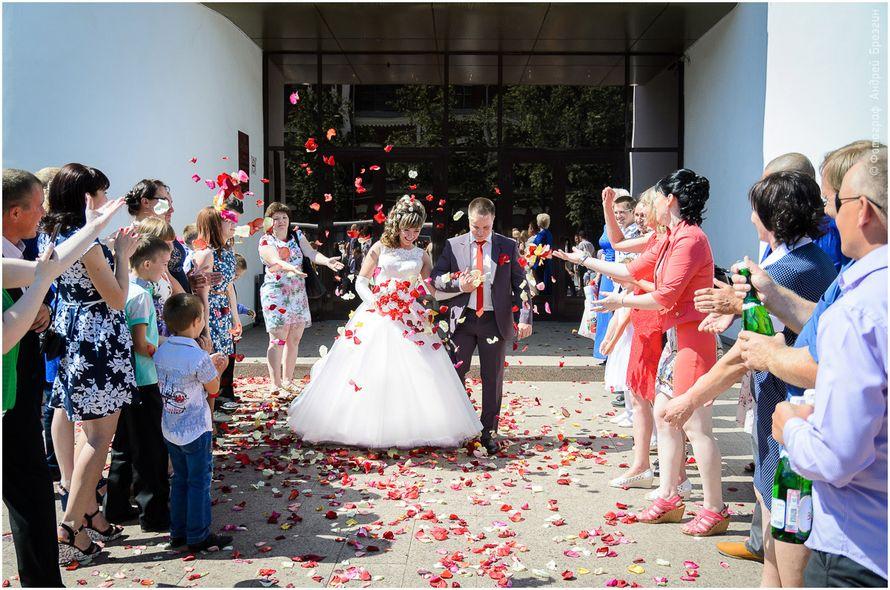 Фото 15433784 в коллекции Свадьбы - Ведущая Антонина Яцентый
