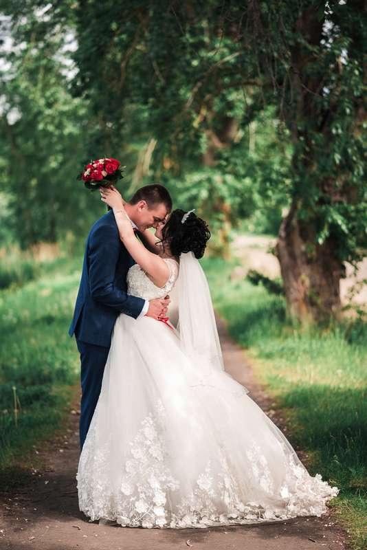 Фото 15445648 в коллекции Свадебное портфолио - Фотограф Абрамова Ксения