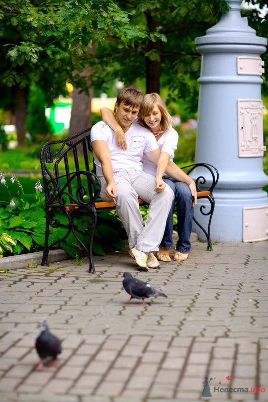 Фото 40264 в коллекции Love Story Виталий и Надежда Сад Эрмитаж