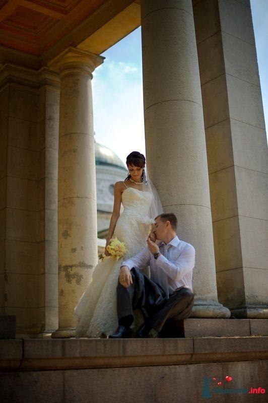Фото 126993 в коллекции Свадебные фотографии - Геннадий Котельников - видео и фотоуслуги
