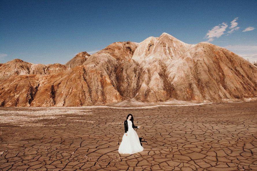 Фото 17515792 в коллекции Наши свадьбы - DinDay - свадебное агентство