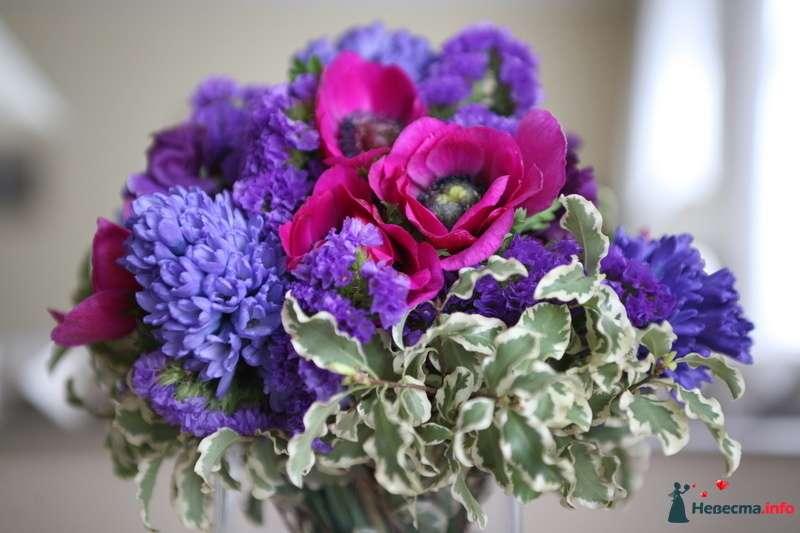 Букет в фиолетово-розовых тонах из анемона, гиацинтов и статицы - фото 116843 коshечка