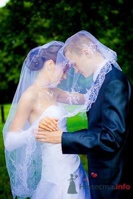 Фото 57412 в коллекции Мои фотографии - Свадебный фотограф Моисеева Юлия