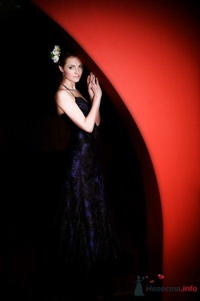 Фото 57435 в коллекции Мои фотографии - Свадебный фотограф Моисеева Юлия