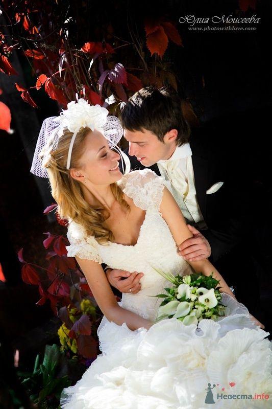 Свадебный фотограф Моисеева Юлия - фото 62543 Свадебный фотограф Моисеева Юлия