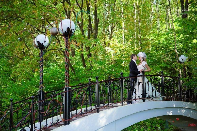 Свадебное фото Моисеева Юлия - фото 62552 Свадебный фотограф Моисеева Юлия