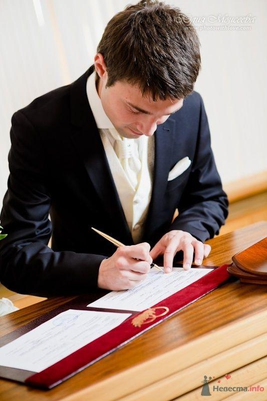бракосочетание в городе Пушкино - фото 62556 Свадебный фотограф Моисеева Юлия