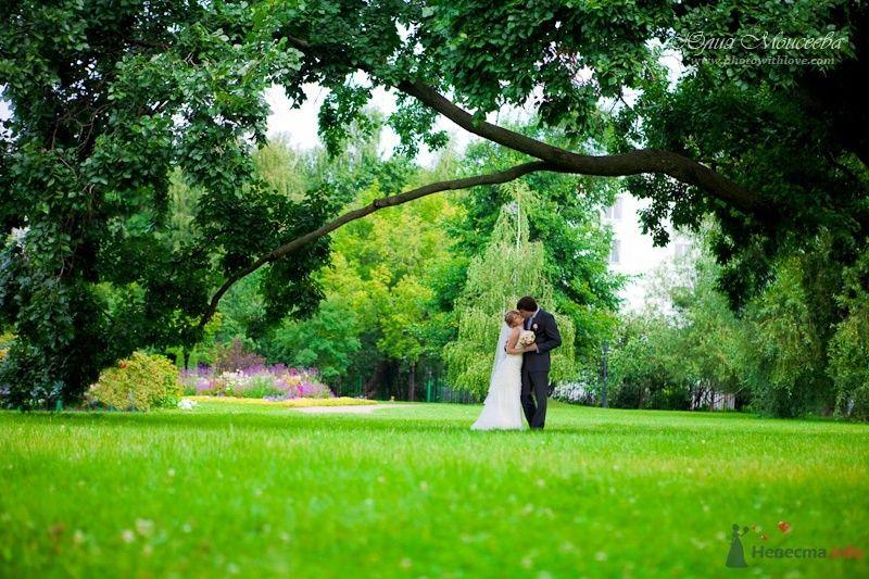 Свадьба в Коломенском - фото 62581 Свадебный фотограф Моисеева Юлия