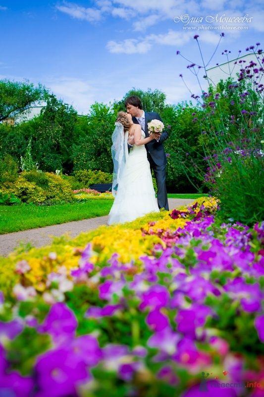 лето свадьба - фото 62599 Свадебный фотограф Моисеева Юлия
