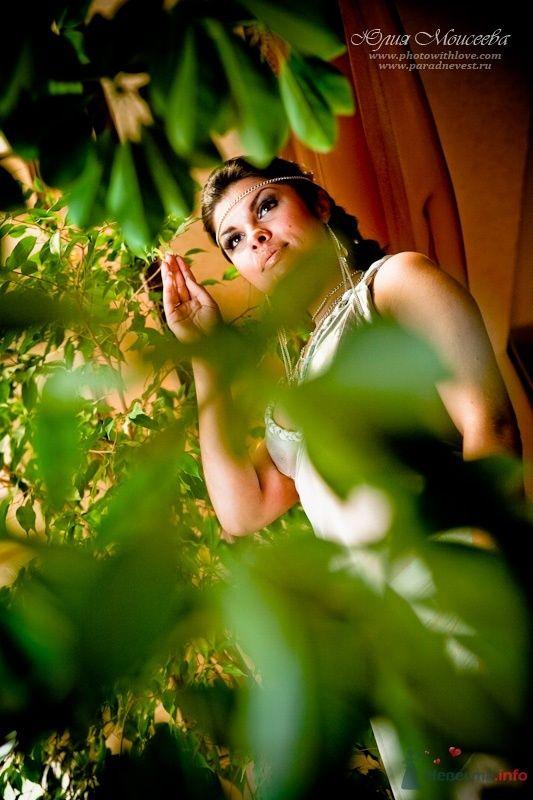 кантри клаб - фото 63147 Свадебный фотограф Моисеева Юлия