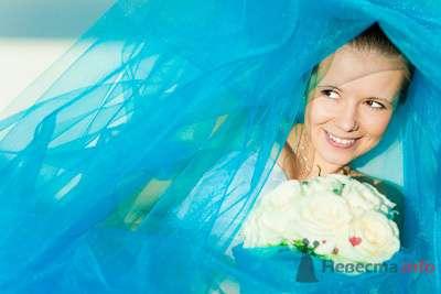 Фото 73449 в коллекции Мои фотографии - Свадебный фотограф Моисеева Юлия