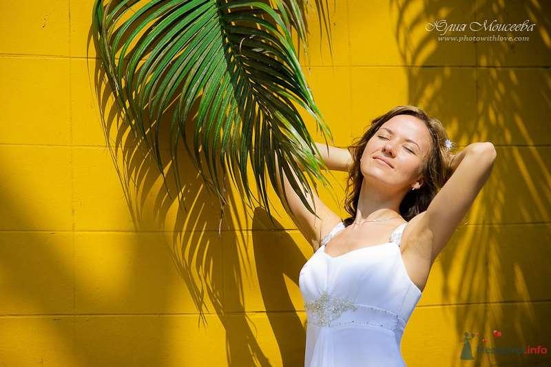 свадьба фото - фото 80348 Свадебный фотограф Моисеева Юлия