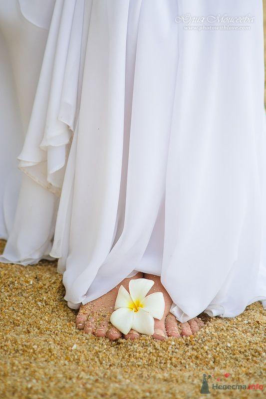 красивые свадебные фотографии - фото 80358 Свадебный фотограф Моисеева Юлия