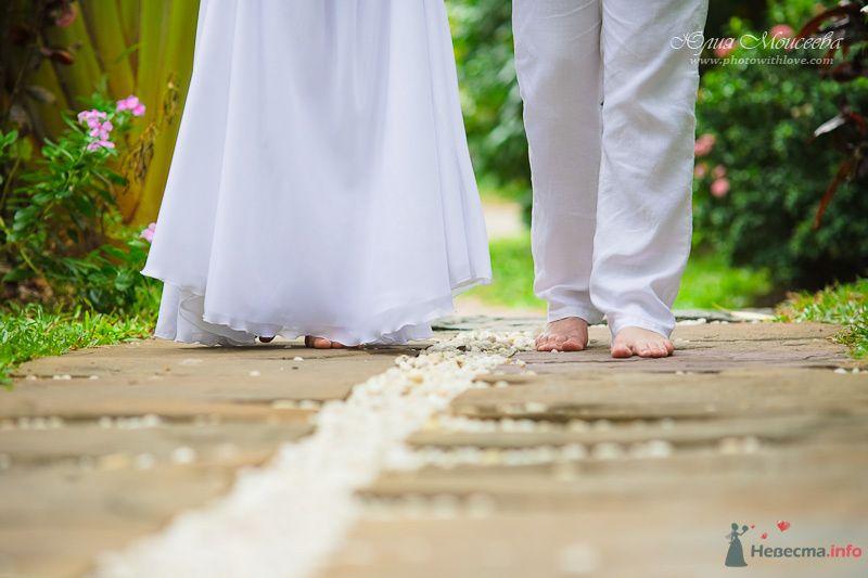 Фото 80408 в коллекции Мои фотографии - Свадебный фотограф Моисеева Юлия