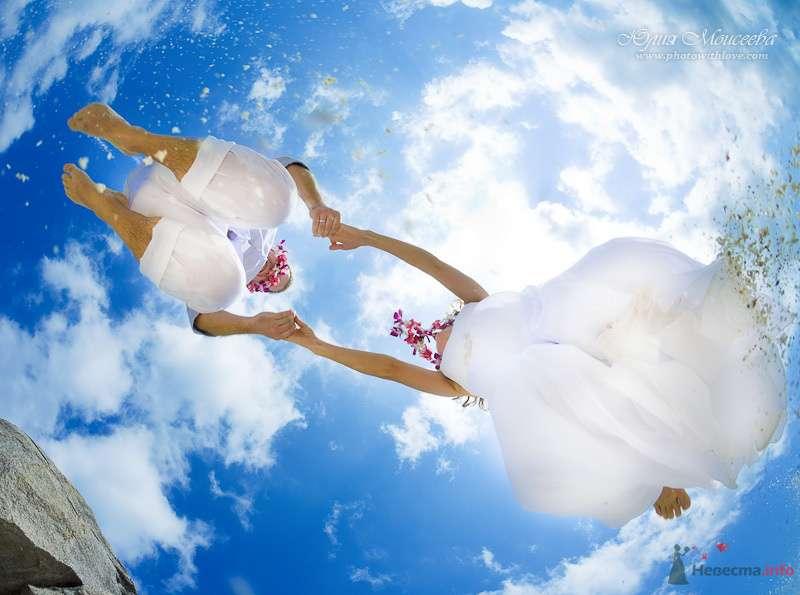 Фото 80418 в коллекции Мои фотографии - Свадебный фотограф Моисеева Юлия