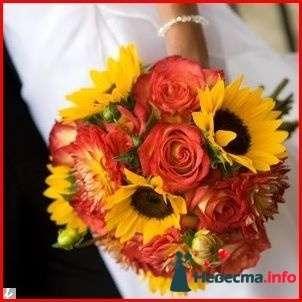 Фото 111933 в коллекции Мои фотографии - Свадебный фотограф Моисеева Юлия