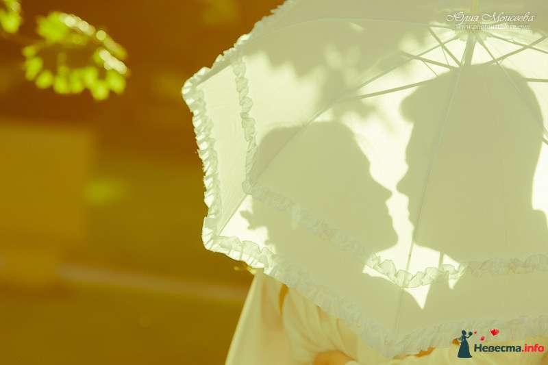В руках жениха и невесты белый зонт с рюшами - фото 114825 Свадебный фотограф Моисеева Юлия