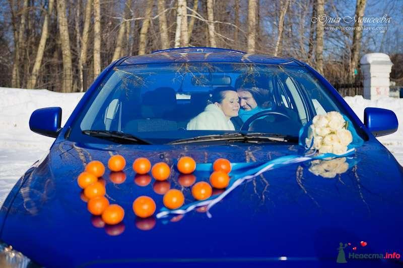 Бирюзовая свадьба - фото 122761 Свадебный фотограф Моисеева Юлия