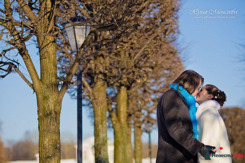 бирюзовая свадьба - фото 122763 Свадебный фотограф Моисеева Юлия