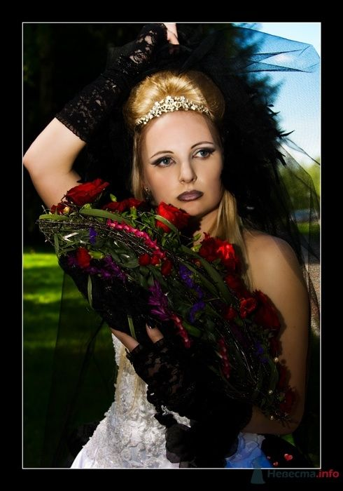 Фото 24584 в коллекции Мои фотографии - Фотограф Вилена Экон