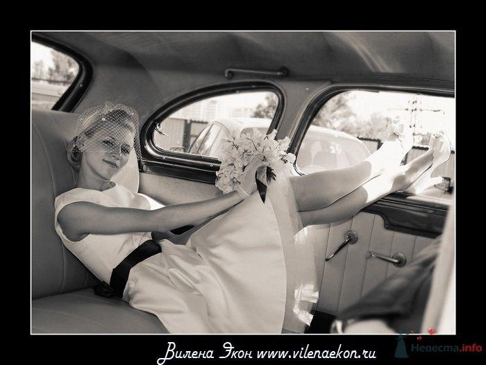 Фото 26476 в коллекции Дима и Лена - Фотограф Вилена Экон