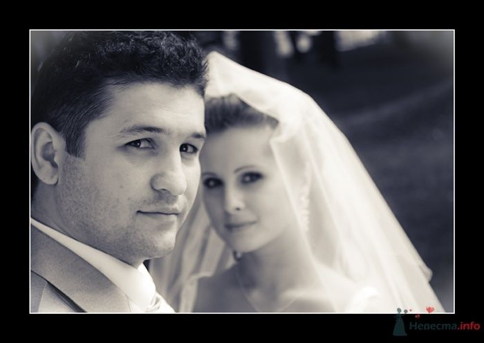 Фото 35787 в коллекции Свадьба Ирины и Алишера