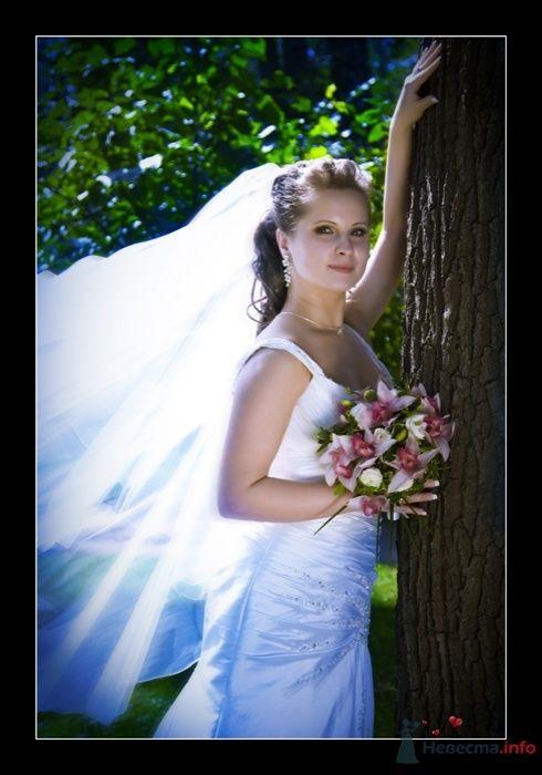 Фото 38109 в коллекции Свадьба Ирины и Алишера