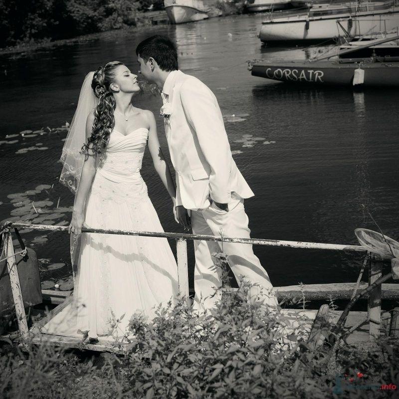 Фото 52976 в коллекции свадьба...
