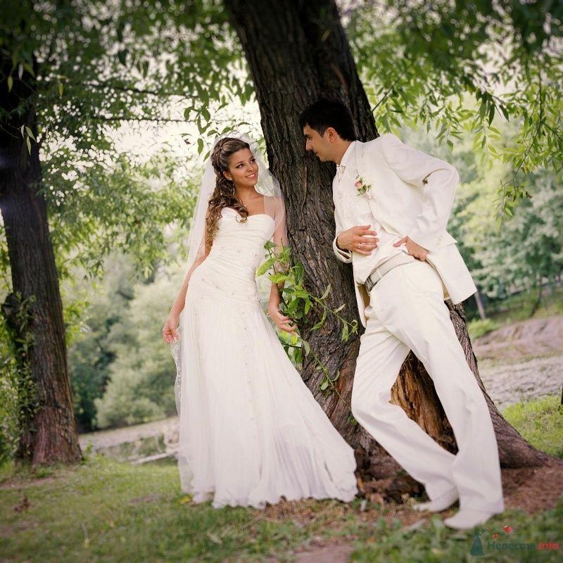 Жених и невеста стоят возле дерева в лесу - фото 53020 AngeLady