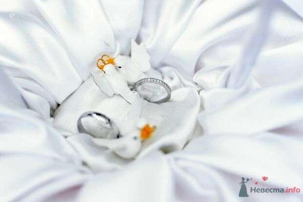 Обручальные кольца из белого золота, с россыпью драгоценных камней на кольце невесты, на фоне белой ткани. - фото 53046 AngeLady