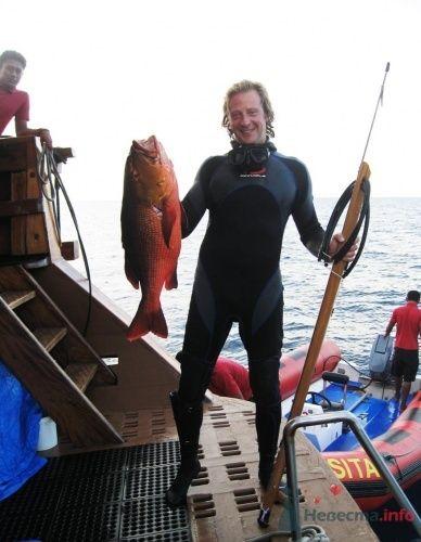 подводная охота - фото 1535 Невеста01
