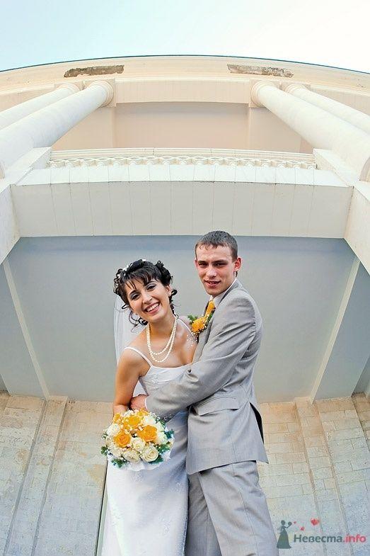 Фото 38214 в коллекции Свадьба - anyuta-ma