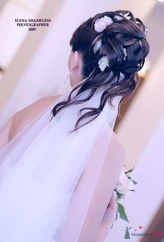 Фото 38427 в коллекции Свадебные фото - shameless
