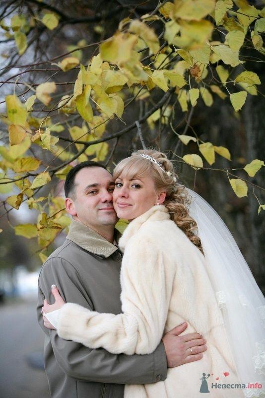 Фото 61553 в коллекции Наша свадьба 31.10.09 - alena_kis