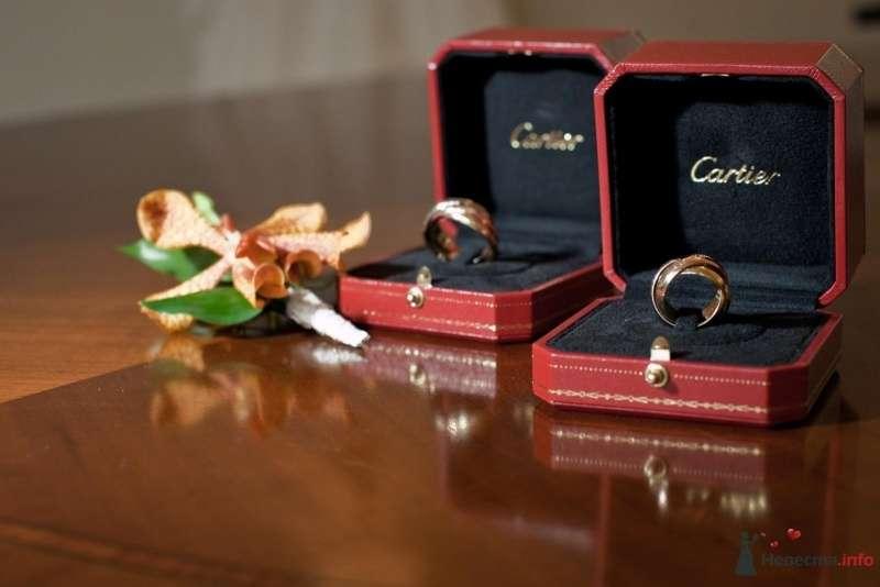 Обручальные кольца в коробочках из желтого и белого золота на фоне лилии. - фото 53699 ларина т