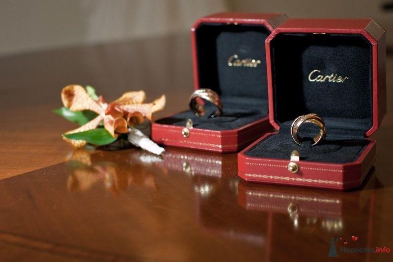 Обручальные кольца в коробочках из желтого и белого золота на фоне - фото 53699 ларина т