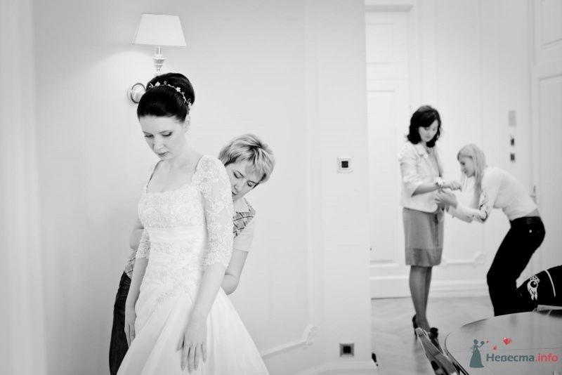 Фото 53702 в коллекции свадьба-фотограф елена кузнецова - ларина т