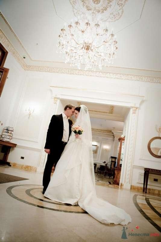 Фото 53708 в коллекции свадьба-фотограф елена кузнецова - ларина т