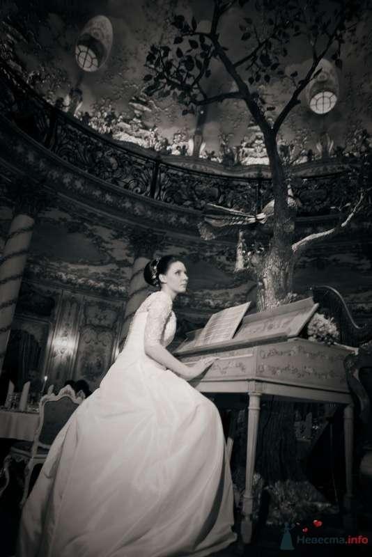 Фото 53731 в коллекции свадьба-фотограф елена кузнецова - ларина т
