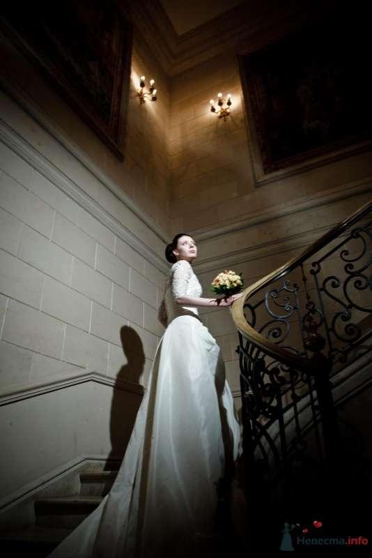Фото 53734 в коллекции свадьба-фотограф елена кузнецова - ларина т
