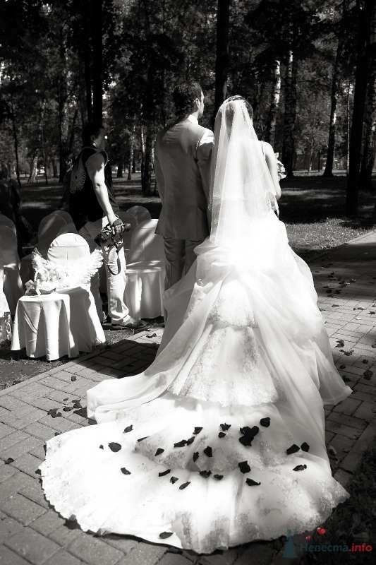 Фото 45456 в коллекции Наша большая европейская свадьба ))) 12.07.09 - Мissis Kейт