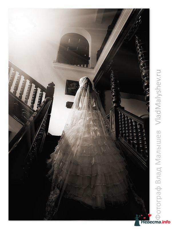 Фото 220368 в коллекции Куба. Свадьба Владимира и Юли - Фотографы Влад и Ася Малышевы