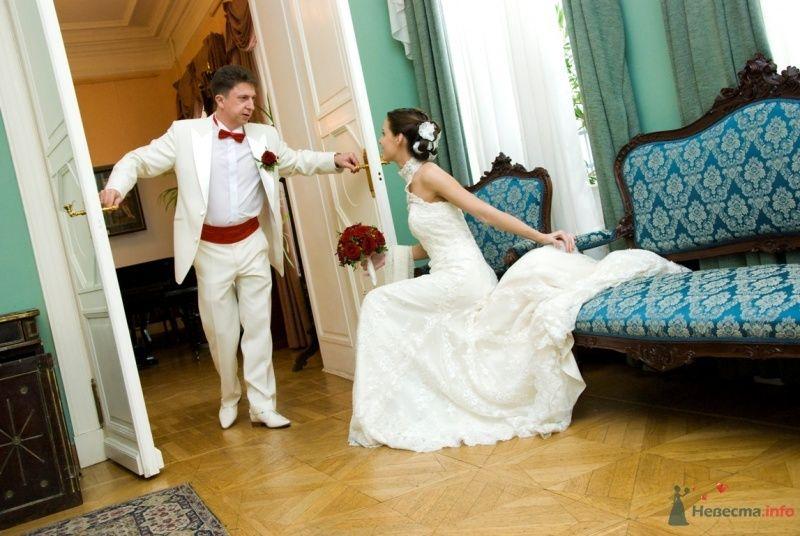 Фото 48766 в коллекции Наша Свадьба - фотографии Ксении Андреевой - katsonya