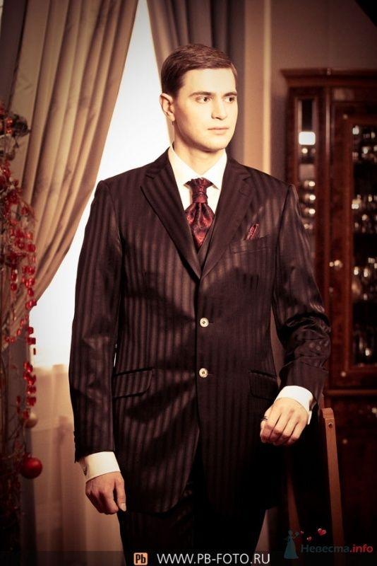"""Классический коричневый полосатый  костюм жениха """"двойка"""" с белой рубашкой, бордовым галстуком и с бордовым платком в нагрудном - фото 69356 Camel Maschine"""